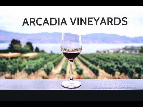 ARCADIA VINEYARDS (MOST TOURISTIC WINE PLACE AT TURKEY)