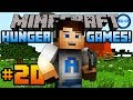 "Minecraft HUNGER GAMES - w/ Ali-A #20! - ""PIT OF DOOM!"""