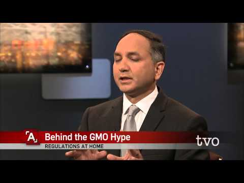 Behind the GMO Hype
