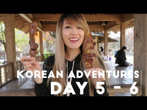 My Korea Adventure   Days 5-6