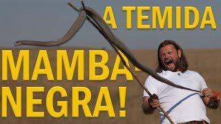 O MOMENTO MAIS TENSO DA MINHA VIDA! | MAMBA-NEGRA | RICHARD RASMUSSEN