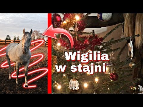 VLOG #20   Wigilia W Stajni!