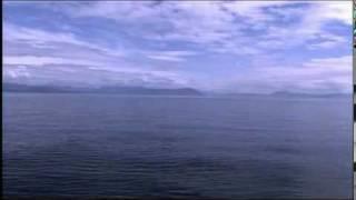 LIFE OF THE OCEAN - Enya