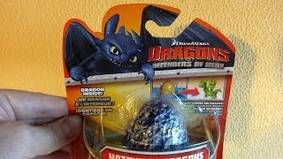 Dragons: Defenders of Berk Surprise Fizzing Egg #2 Hatching Dragon Toys ヒックとドラゴン