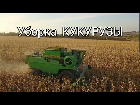УБОРКА КУКУРУЗЫ 2019 ДОН 1500б