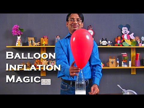 Balloon Inflation Magic With Vinegar and Baking Soda - Easy Science Project For Kids