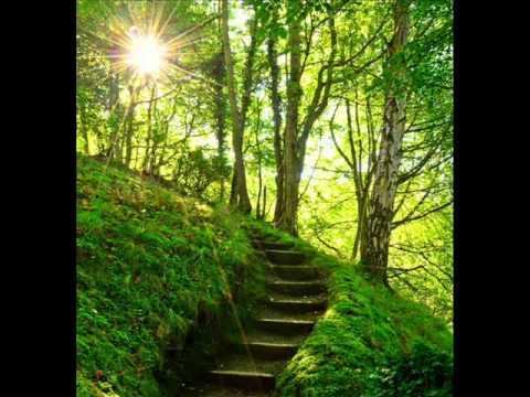 Llewellyn - Hidden Pathways (Reiki music) - YouTube