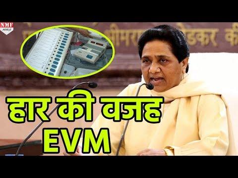 Mayawati ने फिर लगाया EVM में गड़बड़ी का आरोप, कहा- BSP और ज्यादा Seats जीतती