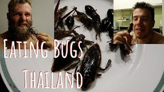 Eating Bugs in Thailand