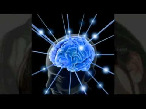hqdefault - Quelle est la différence entre mémoire et intelligence
