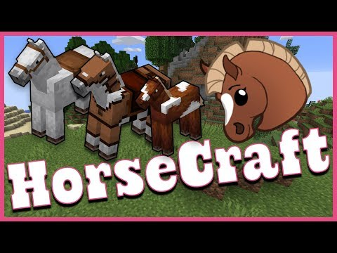 Minecraft MultiPlayer Survival Server HorseCraft in 1.14.4 - Tutorial Guide #1