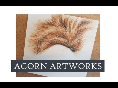 Acorn Artworks - Drawing Fur in Coloured Pencil