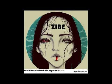 ZIBE-Pure Pleasure Guest Mix(September2017)Vibes Radio
