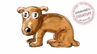 Нарисованные карандашом собаки  Как просто и поэтапно нарисовать собаку лупоглазку