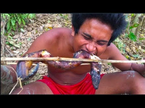 Secret Of Primitive: catch eels in  Mud by hands  for food