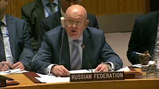 Выступление ООН В.А.Небензи в СБ ООН по санкциям в отношении Демократической Республики Конго