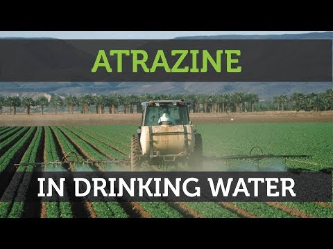 Atrazine Contamination In Drinking Water: What You Need To Know