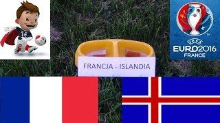 EURO 2016 - Pies typuje wynik meczu Francja - Islandia