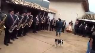 Gran orquesta inconfundibles Huaylas Huacrapuquio barrio santa rosa