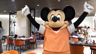 Is This The Best Character Breakfast In Orlando? | Ravello Character Breakfast At The Four Seasons