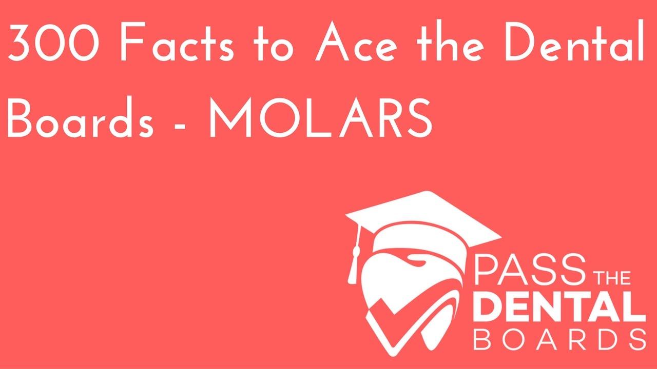 300 Dental Anatomy Facts PART 5 - MOLARS - NBDE Part 1 - YouTube