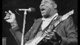 Muddy Waters & Johnny Winter - Mannish Boy