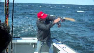Huge Striped Bass pulls rod out of mans hand!