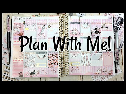 Plan With Me! | Swan Love | Erin Condren Life Planner