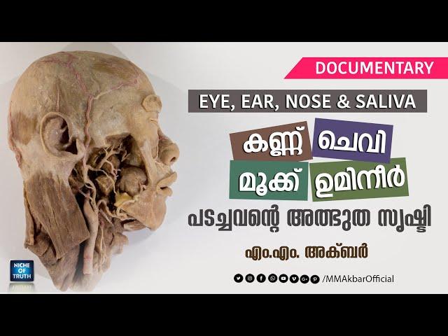 കണ്ണ്, ചെവി, മൂക്ക് ഉമിനീർ; പടച്ചവന്റെ അത്ഭുത സൃഷ്ടി | Eye, Ear, Nose, Saliva Immunology | MM Akbar