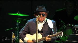 Van Morrison - Cyprus Avenue / You Came Walking Down  (live at the Hollywood Bowl, 2008)