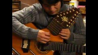 Linda Manzer  Picasso Guitar  - Bamboo - 小川倫生 Michio Ogawa