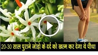 पुरानी से पुरानी गठिया का इलाज ।। arthritis treatment in ayurveda गठिया का घरेलू उपाय