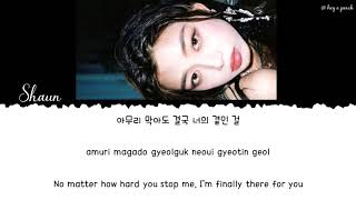 ENG ESP JPN VIE SHAUN Way Back Home Lyrics 가사