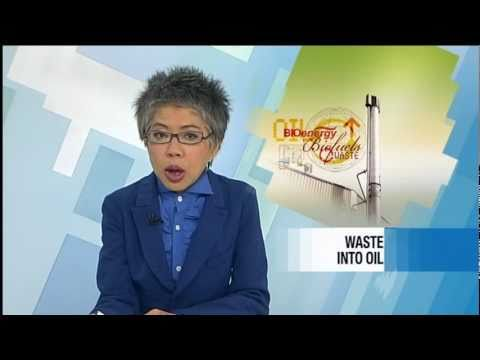 Licella on SBS World News Australia
