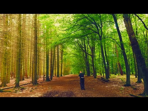 Chillin' In The Chilterns | Woodland Film