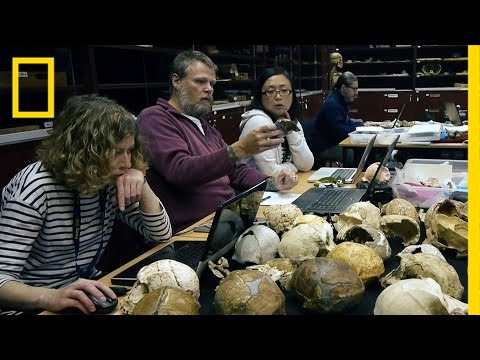 See How Scientists Identified Our New Human Ancestor | National Geographic