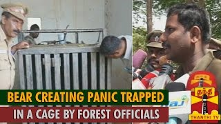 Bear Creating Panic Trapped in A Cage - Thanthi TV