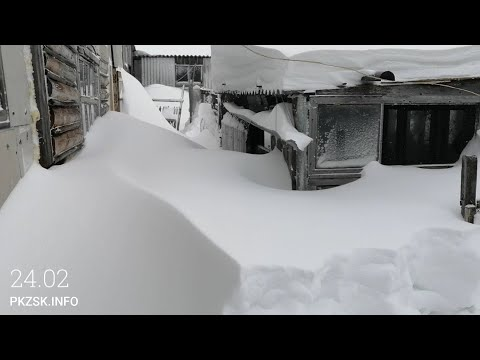 Замело снегом Северный Казахстан. Огромные сугробы.
