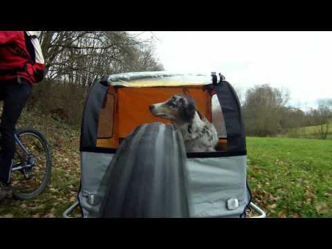 """Australian Shepherd N°5 - FLY by BIKE - Mit mobiler """"Hundehütte"""" auf Spessart-Tour"""