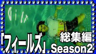 YouTube動画:アイキャッチ「フィールズ」シーズン2総集編 宇宙の真理を掴み取れ!!
