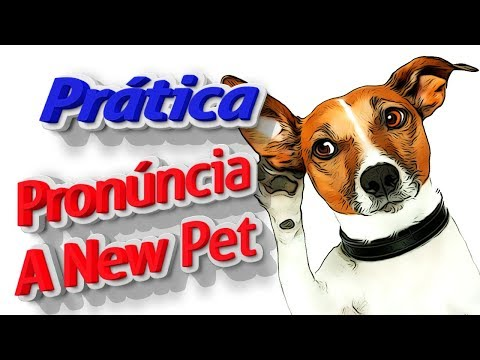 Aula de Inglês ao Vivo com A New Pet