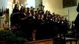 """Io Ti Voria Contar - Coro del Liceo """"Stellini"""" (Udine)"""