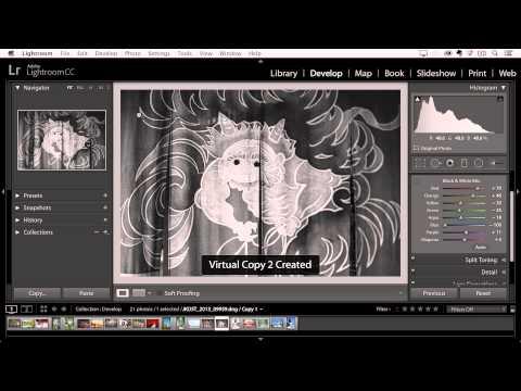 Taking Advantage of Virtual Copies in Lightroom