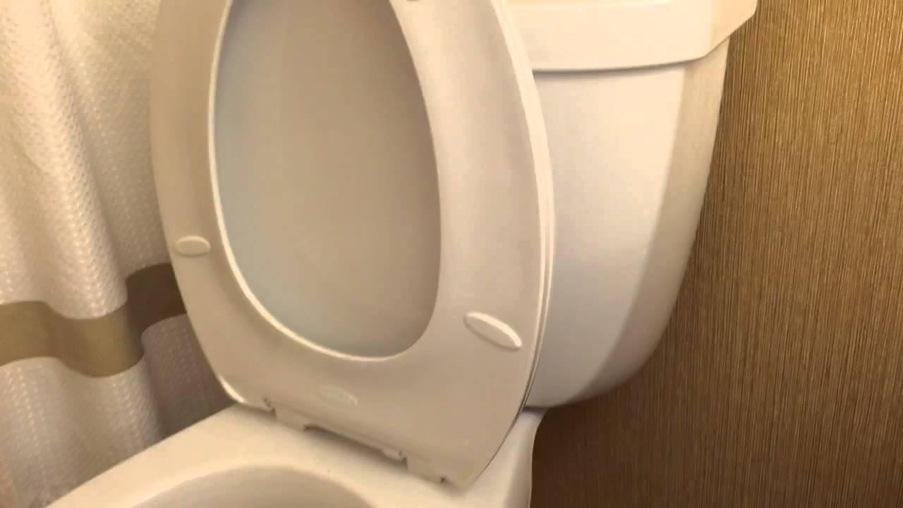 canadian kohler cimarron toilet