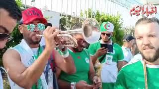 أخبار اليوم  جماهير الجزائر  تحتشد أمام ستاد القاهرة قبل نهائي امم افريقيا