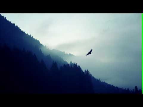 Rocket Rockers - Green Karma [Audio]