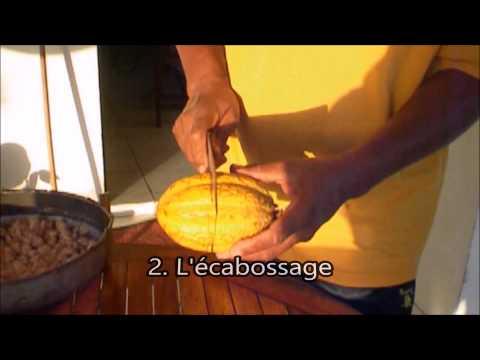 Du cacao au chocolat, une fabrication artisanale ancrée dans la tradition Martiniquaise