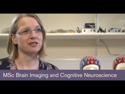 MSc Brain Imaging and Cognitive Neuroscience