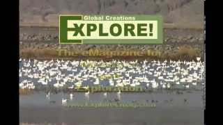 Discover the Tule Lake National Wildlife Refuge