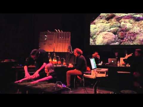 Vanessa Lorenzo / Living Instruments Moss / Le Bourg